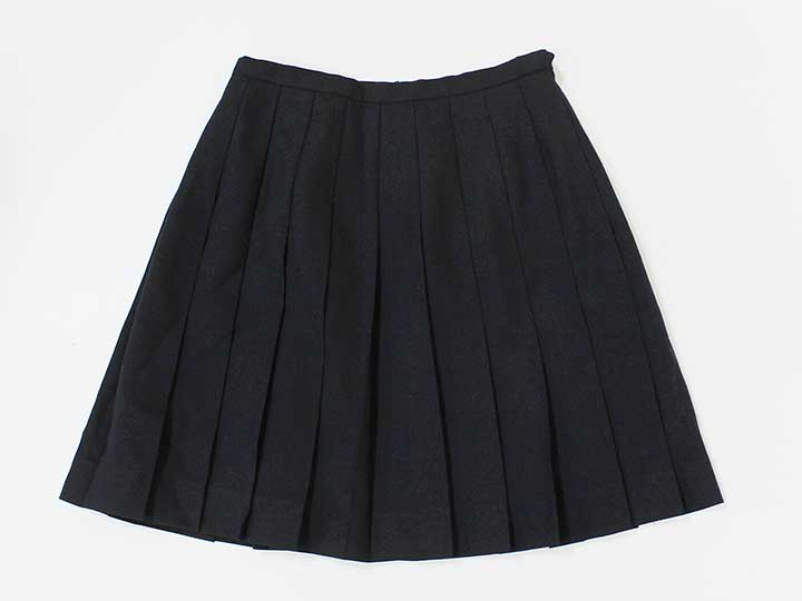 e98649f8af [child of the authority of yeast boy /EASTBOY]7 pleated skirt dark blue  four circle lesson classroom private supplementary school attending school  school ...