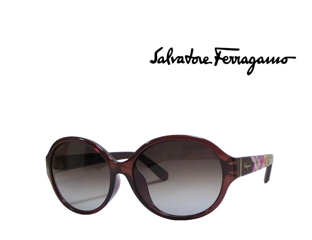 【Salvatore Ferragamo】 サルヴァトーレ フェラガモ サングラス SF872SA  210  ブラウン  国内正規品