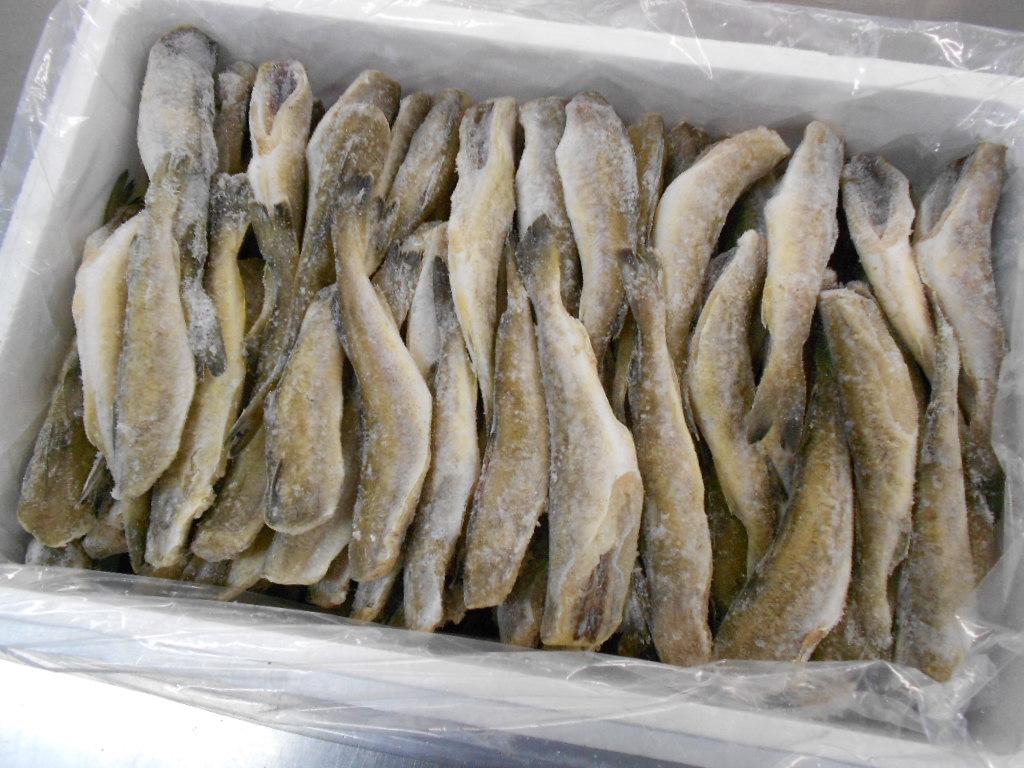 北海道の干物の中でも人気の商品なんですよ(^O^) 〔業務用大量・お買い得〕北海道産生干しこまい5kgセット〔E〕北港直販☆コマイ・氷下魚☆