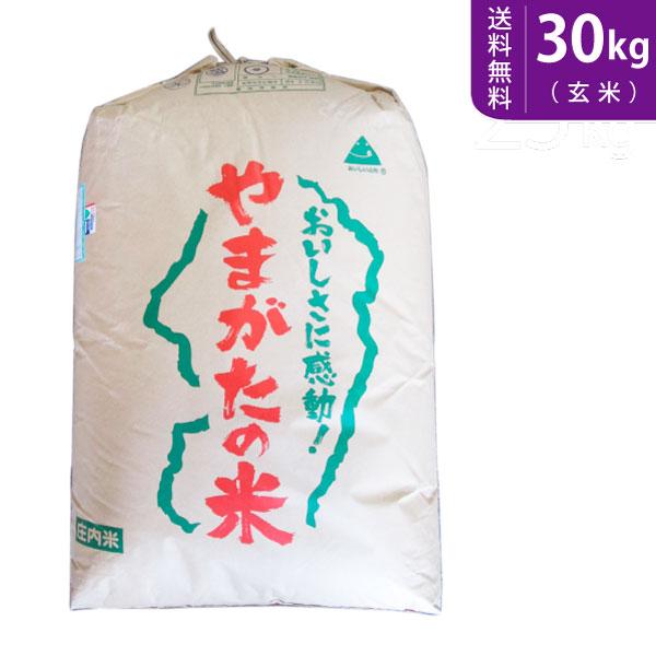 【送料無料】令和元年産 山形県産つや姫 玄米30kg 庄内産 特別栽培米【smtb-TD】【saitama】
