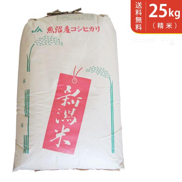 【送料無料】令和元年産 魚沼産コシヒカリ 25kg 十日町地区 最高級 ギフトにおすすめ♪【smtb-TD】【saitama】