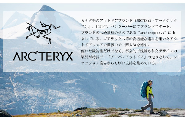 ARC'TERYX アークテリクス リュック blade 20 ブレード20 ブレード バックパック Black 16179 送料無料PiOXTkZu