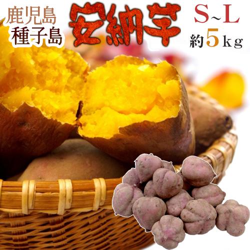 """【送料無料】種子島産 """"安納芋"""" S~Lサイズ 約5kg【予約 10月下旬以降】"""