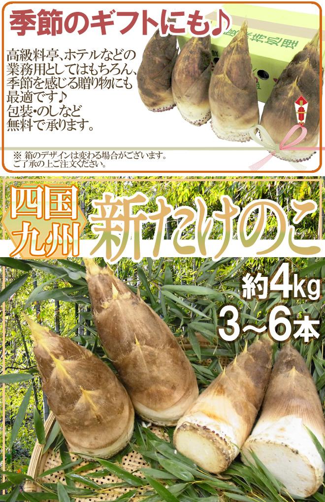 """""""新たけのこ"""" 秀品 3~6本 約4kg 西日本産(九州・四国)【予約 3月下旬~4月】"""