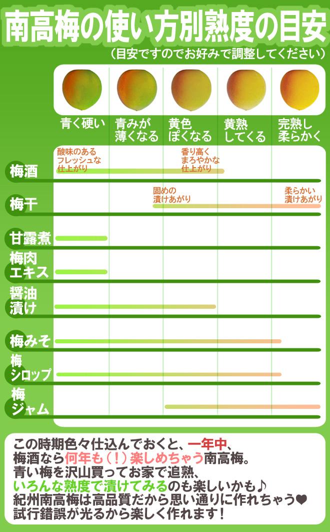 """紀州・和歌山産 """"南高梅 青梅"""" ちょっと訳あり 2L~3L 約1kg《9kg以上ご購入で&1kgおまけ》【予約 5月中旬~6月初旬】"""