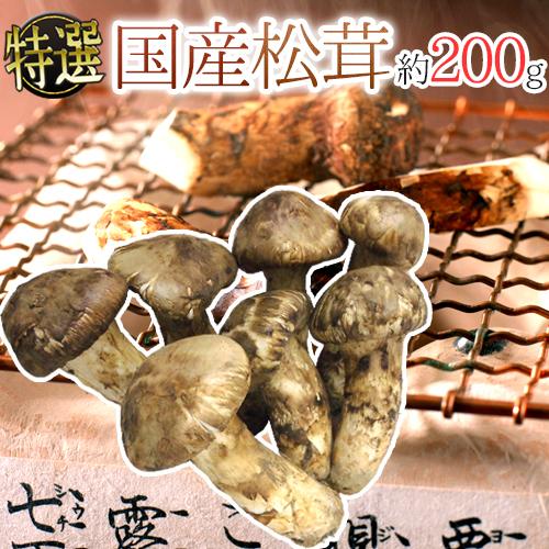"""【送料無料】""""国産松茸"""" 約200g 大きさおまかせ 産地厳選【予約 9月下旬以降】"""
