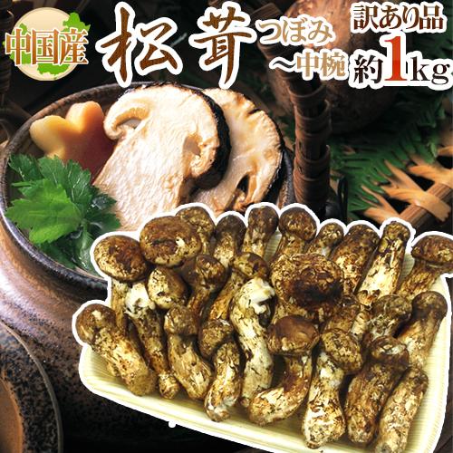 """【送料無料】中国産 """"松茸"""" 約1kg 訳あり 開き方・大きさおまかせ【予約 7月~8月以降】"""