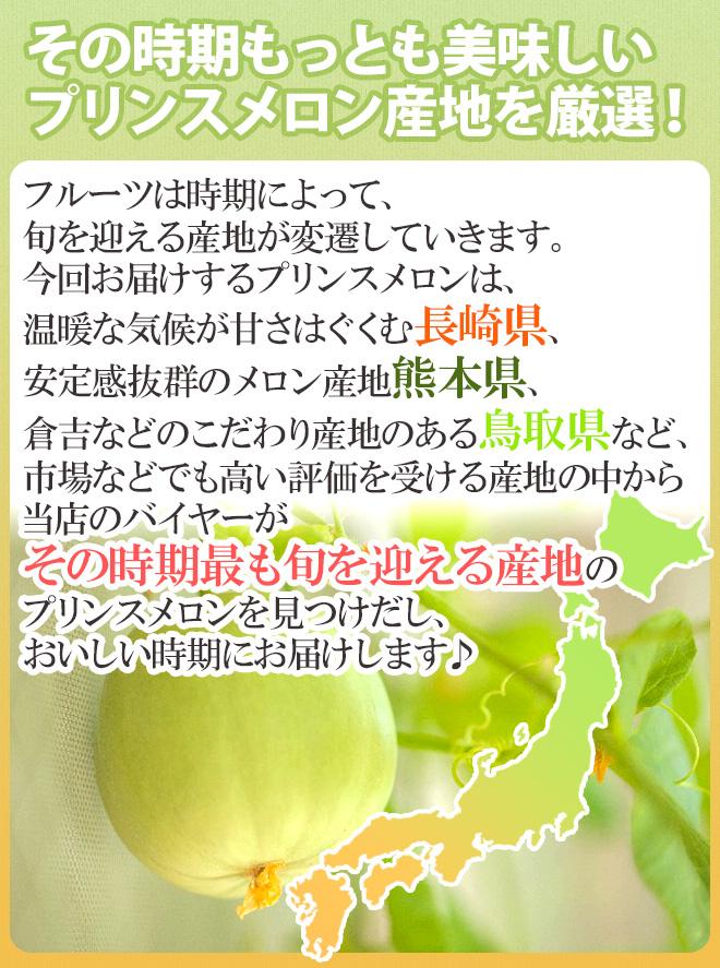 """""""プリンスメロン"""" 訳あり 6~11玉前後 約4kg 産地厳選【予約 5月以降】"""