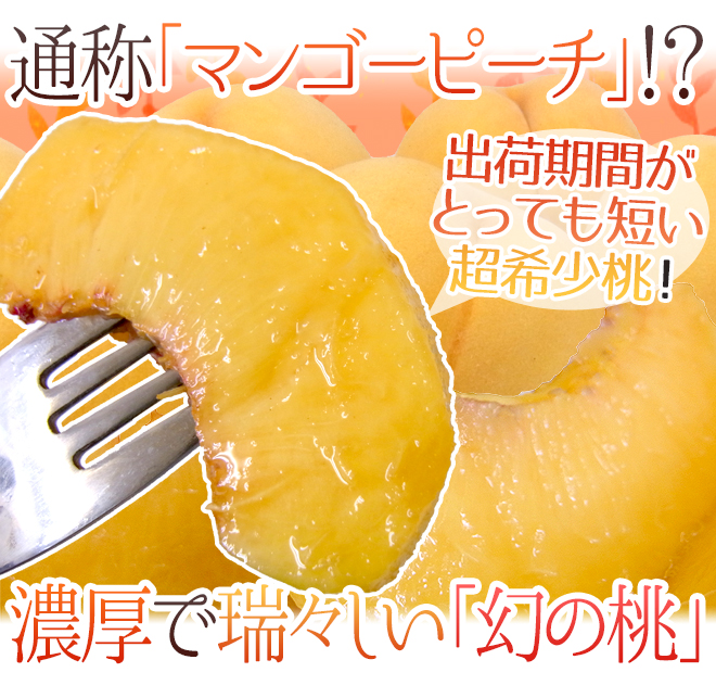 """メーカー公式ショップ 金色に輝く果皮と果肉 トロピカルで濃厚な味わいの桃 送料無料 山梨 """"黄美娘"""" 秀品 6玉前後 桃 予約 7月末以降 約2kg"""