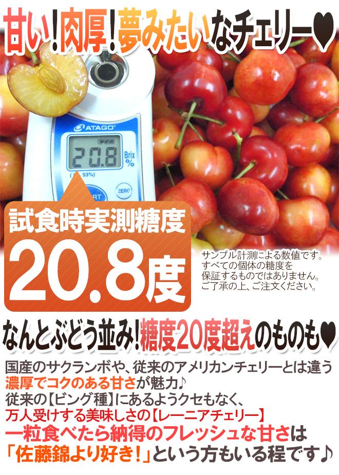 """アメリカ産 """"レーニアチェリー"""" 超大粒 約3kg【予約 6月下旬以降】"""
