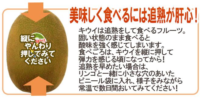 """ゼスプリ ニュージーランド """"サンゴールドキウイ"""" 10玉 約1kg【予約 4月下旬以降】"""