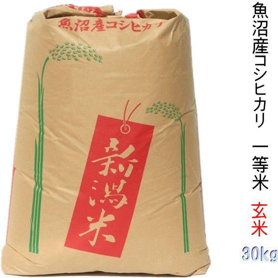 玄米 30kg 新潟 魚沼産コシヒカリ 2019 特A 一等米(農家 自慢のお米)