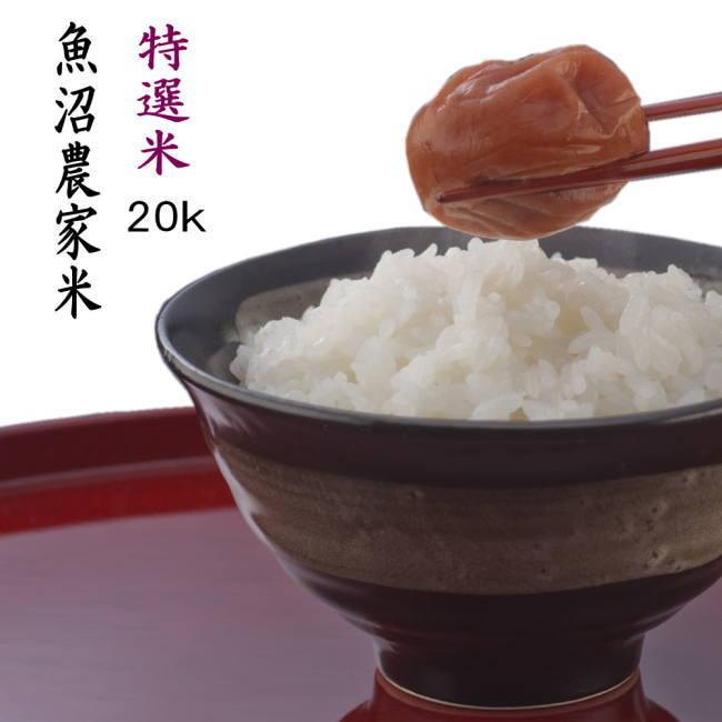 新米 30年産 魚沼産コシヒカリ 新潟 白米 20kg【特選米】一等米 農薬を抑えた 当地 農家 おいしいお米