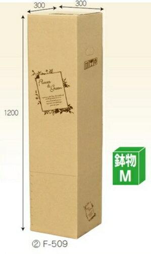 フラワーBOX F509×10枚 パック 鉢物M 一部除き送料無料