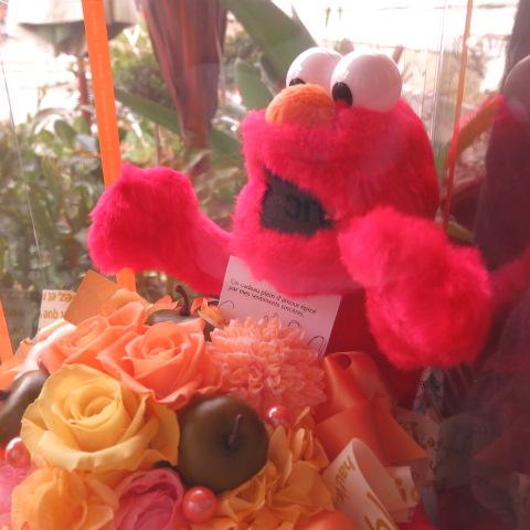 誕生日プレゼント エルモ ぬいぐるみ 花 プリザーブドフラワー入り フラワーギフト クリアーケース付き