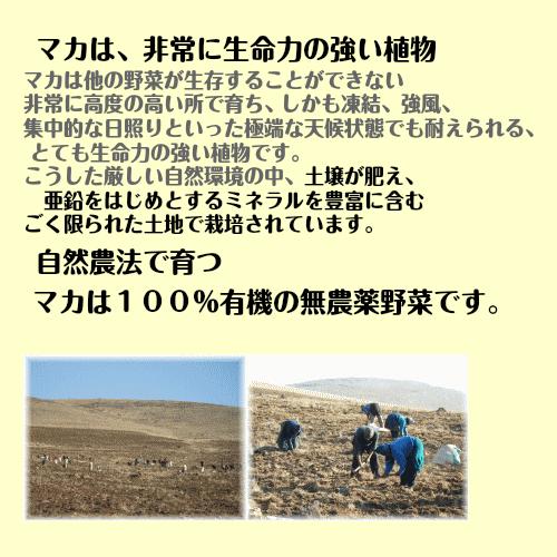 At organic マカ powder 600 g オーガニックマカパウダー 3,000 mg a day 19 yen [マカサプリ]