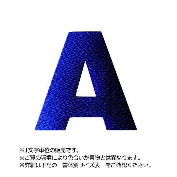 【DM便対応】アイロンで衣類に簡単接着!名入れやナンバリングに便利(アップリケ/アイロンシート/パッチ) アイロンワッペン文字(5cmサイズ/アルファベット)