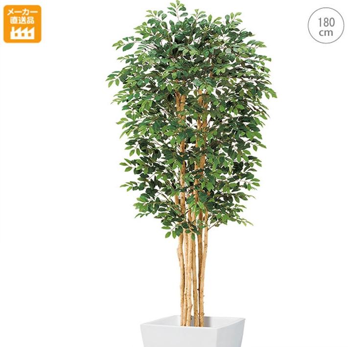 【観葉植物/造花】■180cm トネリコツリー(M) モダン観葉植物 大型 インテリア 天然木 人工観葉植物 送料無料
