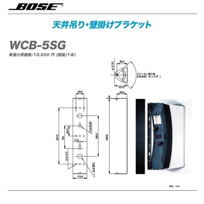 BOSE(ボーズ)天井吊り・壁掛けブラケット『WCB-5SG』【代引き手数料無料!】
