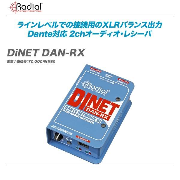 RADIAL(ラジアル)ステレオDIボックス『DiNET DAN-RX』【代引き手数料・送料無料♪】