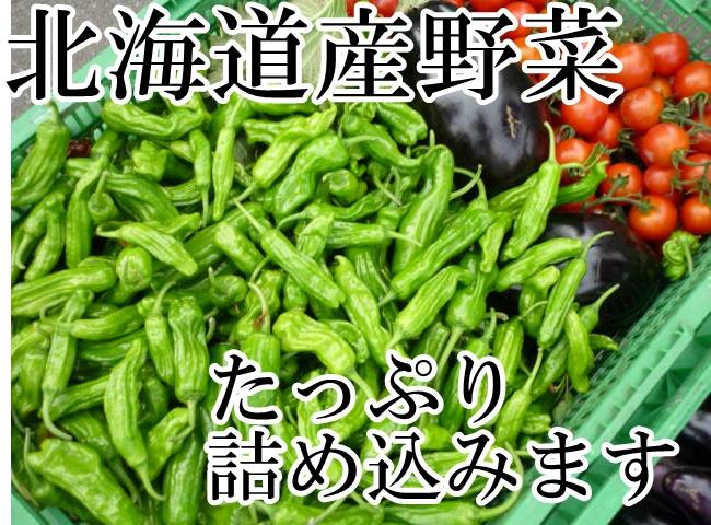 送料無料 期間限定 豪華な 北海道の四季でしか食べられないあの味うま~い 冷蔵便込 北海道産四季のとれたて野菜詰め合わせセットお試し8種類入り 正規品送料無料