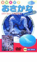 動物大好き おさかなスペシャル50 趣味 人気ショップが最安値挑戦 実用 大放出セール メール便可 中古 DVD