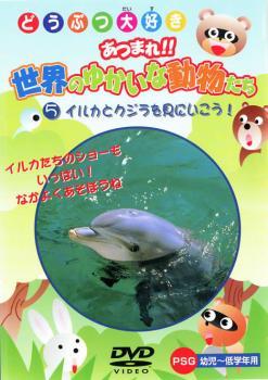 セール特価品 どうつぶ大好き あつまれ 人気ブランド多数対象 世界のゆかいな動物たち 5 イルカとクジラを見にいこう DVD 趣味 メール便可 実用 中古