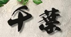 フォント限定 1文字価格 漢字バラ文字表札 ステンレス製 stl85k おしゃれな和風表札 漢字デザイン 屋外で強い! 黒・アイボリー 文字表札