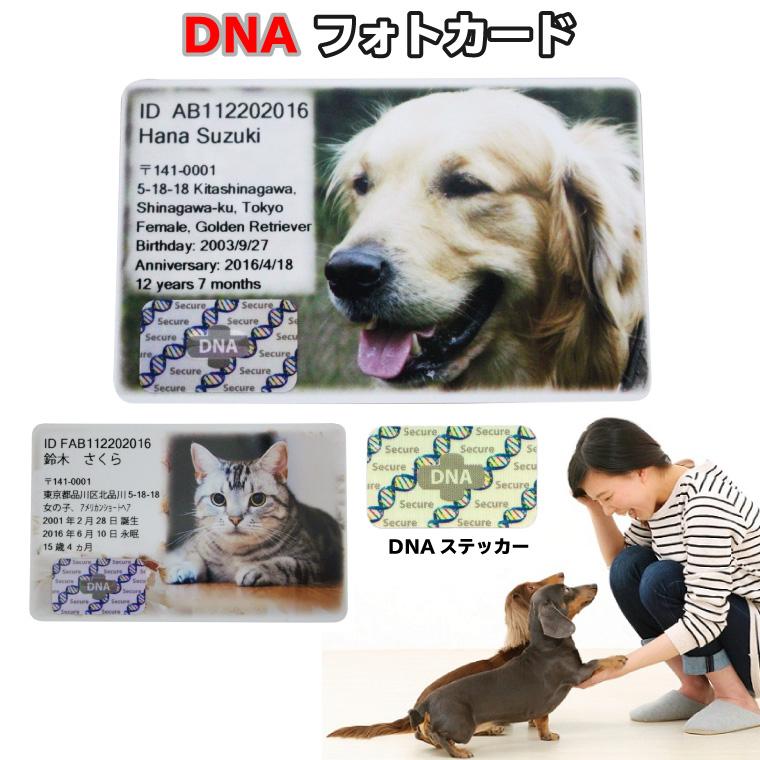 ペット DNA保存 メモリアル フォトカード【DNA stock assist】ホログラム フルカラープリント 記念品 誕生日記念 表彰 ギフト プレゼント メモリアル 思い出
