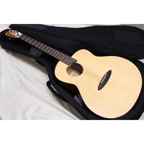 aNueNue(アヌエヌエ) / aNN-L10EF エレクトリック・アコースティックギター エレアコ 【専用ギターケース付】