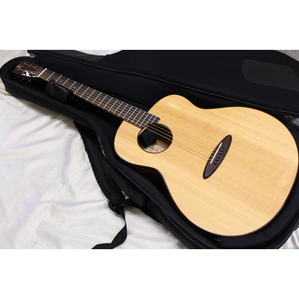 aNueNue / aNN-L12EF エレクトリック・アコースティックギター エレアコ 【専用ギターケース付】【アヌエヌエ】