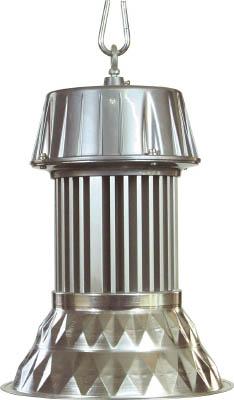 【送料無料】日動工業 LEDメガライト <LEN-100PE-E-D5026> 100W 吊下げ型ダイヤカット型 【照明 照明器具 作業灯 防犯灯 夜間 省エネ 簡易照明 日動 激安 通販 おすすめ 人気 価格 安い 16500円以上送料無料】