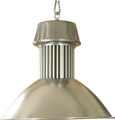 【送料無料】日動工業 LEDメガライト <LEN-100PE-E-W5026> 100W 吊り下げ式拡散型【照明 照明器具 屋外 夜間 日動 激安 通販 おすすめ 人気 価格 安い 16200円以上送料無料】