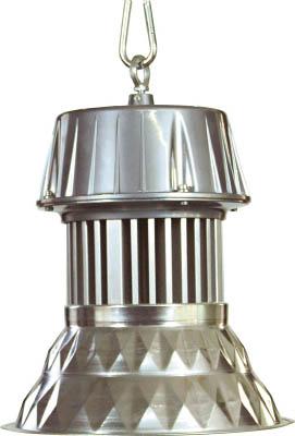 【送料無料】日動工業 LEDメガライト <LEN-70PE-E-D5026> 70W 吊下げ式ダイヤカット 【照明 照明器具 屋外 夜間 日動 激安 通販 おすすめ 人気 価格 安い 16500円以上送料無料】