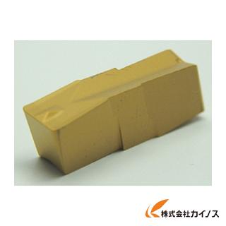 イスカル A チップ IC20 GIP3.00-0.20 GIP3.000.20 (10個) 【最安値挑戦 激安 通販 おすすめ 人気 価格 安い おしゃれ 16500円以上 送料無料】