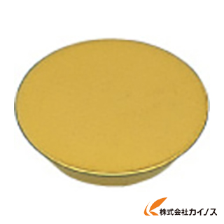 三菱 チップ F7030 RGEN2004M0SN (10個) 【最安値挑戦 激安 通販 おすすめ 人気 価格 安い おしゃれ 】