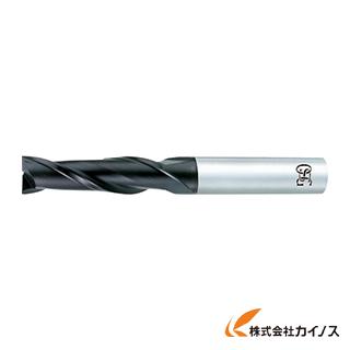 【送料無料】 OSG 超硬エンドミル FX 2刃ロング 12 8522120 FX-MG-EDL-12 FXMGEDL12 【最安値挑戦 激安 通販 おすすめ 人気 価格 安い おしゃれ】