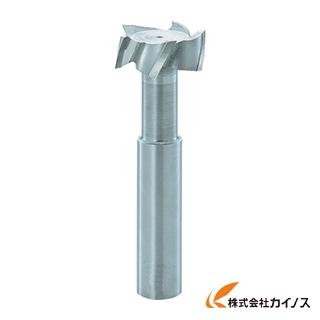 FKD Tスロットエンドミル22×6 TSE22X6 【最安値挑戦 激安 通販 おすすめ 人気 価格 安い おしゃれ 】