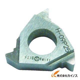 三和 外径三角ネジ切チップ P2.5 09P25 (10個) 【最安値挑戦 激安 通販 おすすめ 人気 価格 安い おしゃれ 】