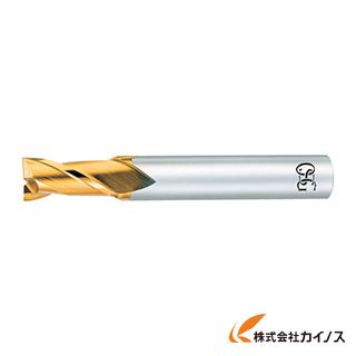 OSG ハイスエンドミル 88043 EX-TIN-EDS-33 EXTINEDS33 【最安値挑戦 激安 通販 おすすめ 人気 価格 安い おしゃれ】