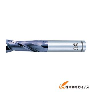 OSG ハイスエンドミル 8451740 V-XPM-EDL-24 VXPMEDL24 【最安値挑戦 激安 通販 おすすめ 人気 価格 安い おしゃれ】
