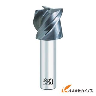 【送料無料】 OSG 超硬エンドミル 3000725 CA-MFE-SF-22XR1 CAMFESF22XR1 【最安値挑戦 激安 通販 おすすめ 人気 価格 安い おしゃれ】