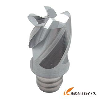 【送料無料】 イスカル C マルチマスターヘッド IC308 MM MMEC250H22C65T15CF (2個) 【最安値挑戦 激安 通販 おすすめ 人気 価格 安い おしゃれ】