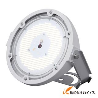 【送料無料】 IRIS RZシリーズ 投光器タイプ水銀灯700W相当 ビーム角110° LDRSP125N-110-BS LDRSP125N110BS 【最安値挑戦 激安 通販 おすすめ 人気 価格 安い おしゃれ】