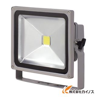日動 LED作業灯 30W LPR-S30D-3ME LPRS30D3ME 【最安値挑戦 激安 通販 おすすめ 人気 価格 安い おしゃれ 】