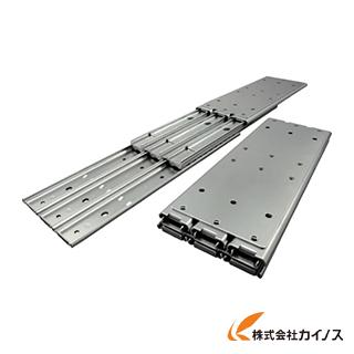 アキュライド ダブルスライドレール457.2mm C530-18 C53018 【最安値挑戦 激安 通販 おすすめ 人気 価格 安い おしゃれ】