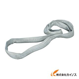 田村 耐酸水切りスリング HMN-W010/N-1.0×2.5 MPWN1000250