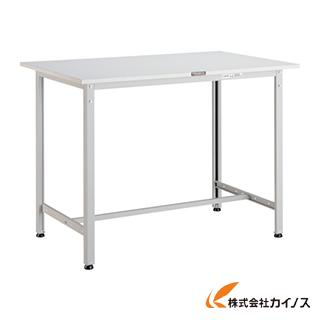 TRUSCO HAE型立作業台 1200X900XH900 W色 HAE-1209