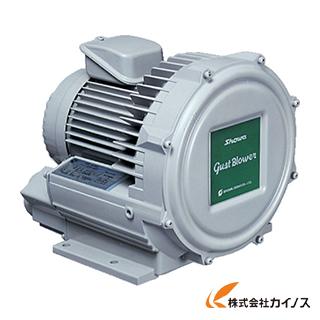 昭和電機 電動送風機 渦流式高圧シリーズ ガストブロアシリーズ(0.1kW) U2V-10T