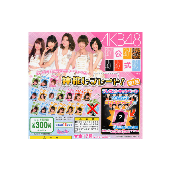 新作多数 送料無料 AKB48神推しプレートパート1より 16種 新作続 ガチャガチャ ガシャポン バンダイガチャポン